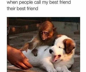 best friends and funny image