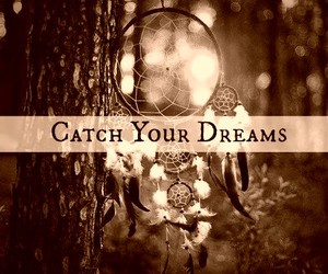 catch and dreams image