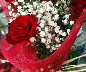 roses, خطوبه, and حب image