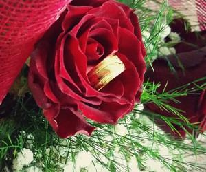 mariage, ring, and wedding image