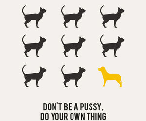 at, don't be, and dog image