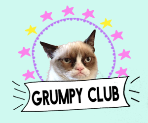 club and cat image