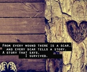 scars, quote, and story image