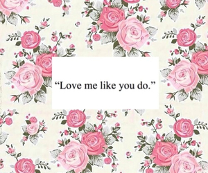 flower, pink, and love image