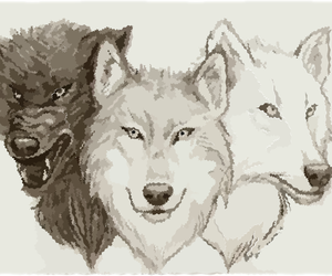 wolf, drawing, and beautiful image