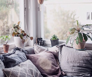 blankets, cushions, and decor image