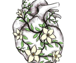 artsy, drawing, and heart image