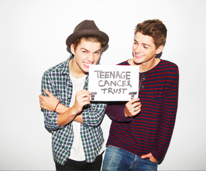 boys, twins, and harries image