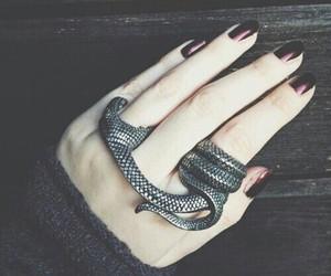 ring, snake, and grunge image