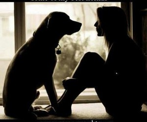 best friends, dogs, and love image