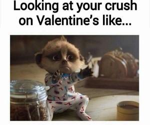 crush, valentine, and funny image