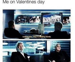funny, hunger games, and valentines day image