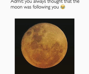 funny, moon, and lol image