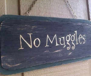harry potter, muggles, and book image