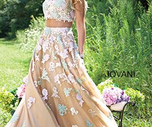 dress, indian, and jovani image