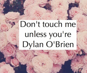 dylan o'brien, flowers, and teen wolf image