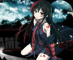 akame ga kill, anime, and akame image