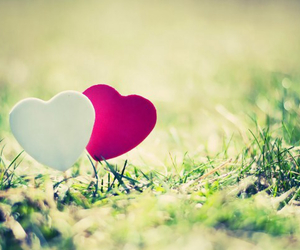 hearts, spring, and love image