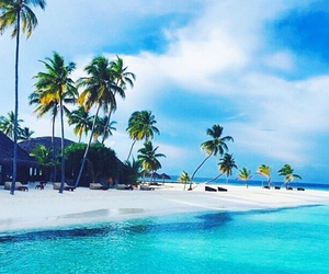 beach, paradise, and world image