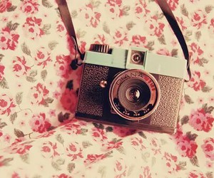 camera, flowers, and vintage image