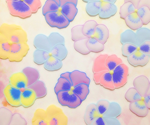 flowers, pansy, and pastel image