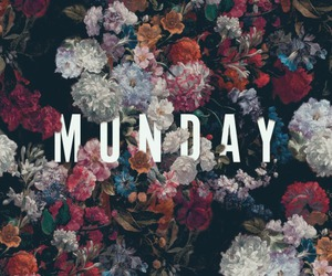 flowers and monday image