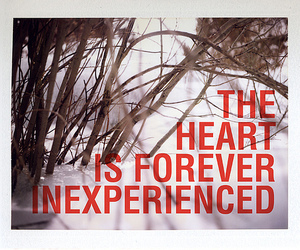 heart, forever, and text image
