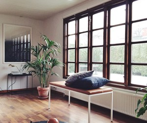 decoration, harmony, and interior image