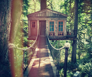 cabin, forest, and tree house image