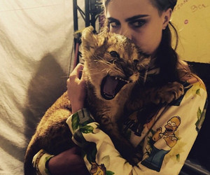 cara delevingne, lion, and cara image