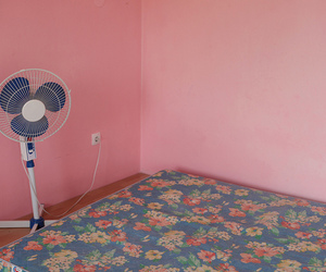 pink, bed, and fan image
