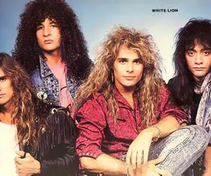 white lion, metal, and rock image