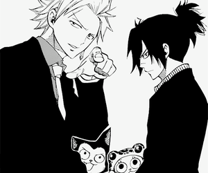 sting, fairy tail, and sabertooth image