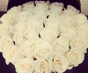 flowers, inlove, and romantic image