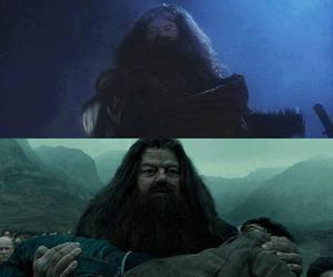 harry potter and hagrid image