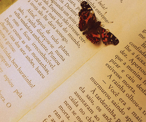 beautiful, book, and butterfly image