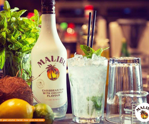 alcohol, coconut, and drinks image
