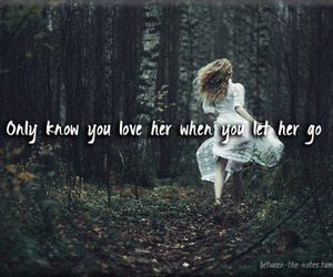 let her go, passenger, and quotes image