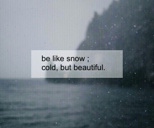 quote, beautiful, and cold image