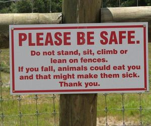 funny, sign, and animal image