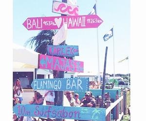 bar, beach, and flamingo image