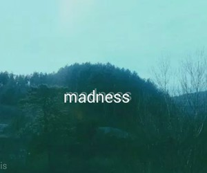 madness and love image