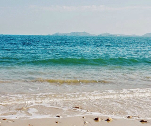 sea, beach, and landscapes image