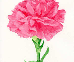 flowers, paint, and pink image