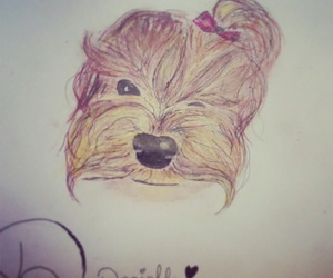dog, armenian, and art image
