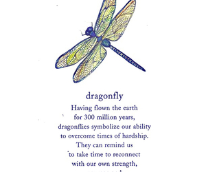 courage, dragonfly, and happiness image
