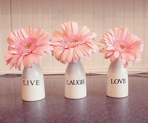 flowers, love, and live image