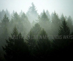 love quotes, Lyrics, and photography image