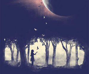 moon, night, and bird image