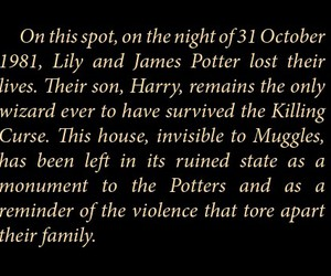 harrypotter, james, and lily image